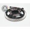Kép 2/2 - RGB-W (meleg fehér) SMD 5050 LED szalag - IP20, 60 LED/m 1
