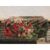 Kép 4/6 - Nortene Belátásgátló fűzőlyukkal 85%, nyomtatott minta STYLIA (1x3 méter) virág