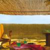 Kép 1/6 - Nortene Belátáskorlátozó 75%, természetes nádszövet REEDCANE (2x5 méter)