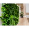 Kép 10/17 - Nortene Vertical Tropic műanyag zöldfal trópusi növényekkel (100x100 cm)