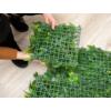 Kép 4/17 - Nortene Vertical Tropic műanyag zöldfal trópusi növényekkel (100x100 cm)