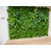 Kép 6/17 - Nortene Vertical Tropic műanyag zöldfal trópusi növényekkel (100x100 cm)