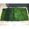 Kép 9/14 - Nortene Vertical Forest műanyag zöldfal az erdő növényeivel (100x100 cm)