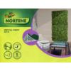 Kép 13/14 - Nortene Vertical Forest műanyag zöldfal az erdő növényeivel (100x100 cm)