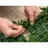 Kép 3/14 - Nortene Vertical Forest műanyag zöldfal az erdő növényeivel (100x100 cm)