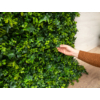 Kép 5/14 - Nortene Vertical Forest műanyag zöldfal az erdő növényeivel (100x100 cm)