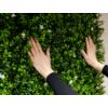 Kép 9/14 - Nortene Vertical Jasmin műanyag zöldfal jázmin virággal (100x100 cm)