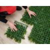 Kép 5/14 - Nortene Vertical Jasmin műanyag zöldfal jázmin virággal (100x100 cm)