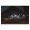 Kép 8/10 - EMOS LED karácsonyi nano fényfüzér süni, 2.4 m, 3x AA, beltéri, hideg fehér, időzítő