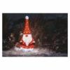 Kép 7/8 - EMOS LED karácsonyi manó, 61 cm, kültéri és beltéri, hideg fehér, időzítő, IP44