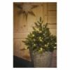 Kép 4/8 - EMOS LED karácsonyfa, 75 cm, 3x AA, beltéri, meleg fehér, időzítő