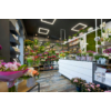Kép 6/8 - Kanlux AVAR 6060 40W-NW Design LED panel