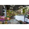 Kép 7/9 - Kanlux AVAR 6060 40W-WW Design LED panel