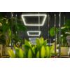 Kép 8/9 - Kanlux AVAR 6060 40W-WW Design LED panel