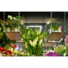 Kép 8/8 - Kanlux AVAR 6060 40W-NW Design LED panel