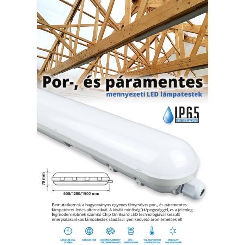 F-Series por és páramentes LED lámpatest IP65 (48W) 150 cm, 6000K (13059)